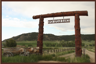 American Quarter Horses & Commercial Cattle Ranch in Montana