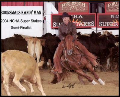 Boonsmals Kandyman                      description2000 Sorrel Stallion AQHA #3917095   PERFORMANCE RECORD: NCHA earner of $27,396.00. 2004 Wyoming CHA Open Derby Reserve Champion; 3rd CHA Nebraska Open Derby; semi-finalist in the NCHA Open Super Stakes; NCHA Western Nationals $10,000 Novice Non-Pro. By PEPTOBOONSMAL (1992). $180,487: 1995 NCHA Open Futurity Champion; 1996 Bonanza 4-Year-Old Open Derby Champion; 4th, 1996 NCHA Open Super Stakes; 1996 Gold Coast Open Derby Champion; finalist in the 1996 NCHA Open Derby and Augusta 4-Year-Old Open Futurity. The 2009 Equi-Stat #3 Leading Cutting Sire, and an NRCHA and NRHA Leading Sire, PEPTOBOONSMAL has been a top 5 cutting sire every year since his first full crop showed in 2001. He is also the Equi-Stat #8 All-Time Leading Cutting Sire and an NRCHA Top 20 All-Time Leading Sire. 1st Dam: HICKORYS HANDY KANDY, by Doc's Hickory. $98,311: split 5th, NCHA Super Stakes Non-Pro Classic; finalist in the NCHA Open Derby; Chisholm Trail Non-Pro Derby Champion; Southern 5/6-Year-Old Amateur Champion; Southern 4-Year-Old Open Reserve Champion; 3rd, AQHYA World Championship Cutting twice; 3rd, Southern 5/6-Year-Old Non-Pro twice; 3rd, CHA Nebraska 5/6-Year-Old Open; finalist in the Memphis Open and Non-Pro Futurities, Memphis Non-Pro Classic, Bonanza 4-Year-Old Non-Pro, Gold Coast 5/6-Year-Old Non-Pro, Augusta Open Classic; Chevy Nationals East $20,000 Non-Pro and Senior Youth finalist. Dam of 7 money earners. 2nd Dam: HANDY GOLD ZAN, producer of 4 money earners. 3rd Dam: HANDY HIRED GIRL, 41 AQHA points, Performance ROM; NCHA money earner and producer.